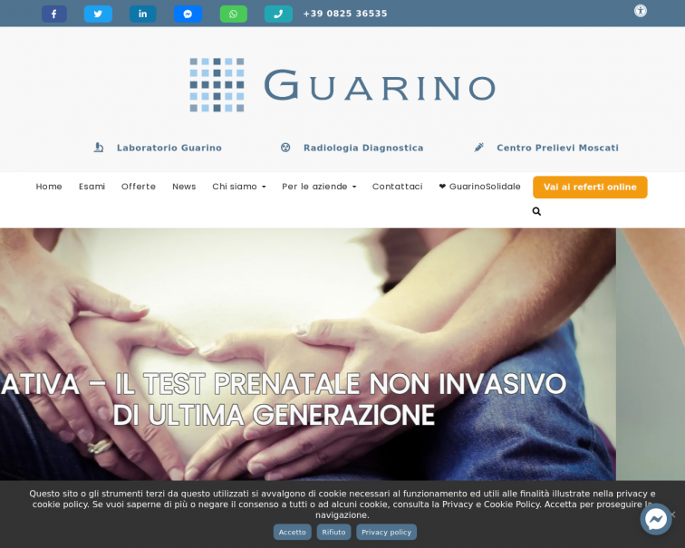 Screenshot of www.guarinolab.it