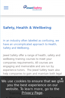 Mobile screenshot of www.jewelsafety.co.uk