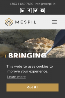 Mobile screenshot of www.mespil.ie