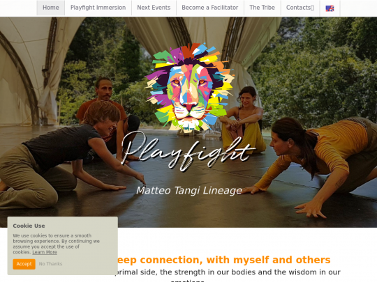 Tablet screenshot of www.playfight.org
