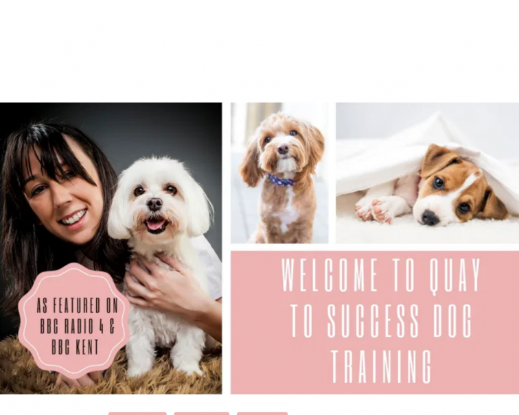 Screenshot of quaytosuccessdogtraining.co.uk