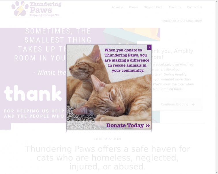 Screenshot of www.thunderingpaws.org