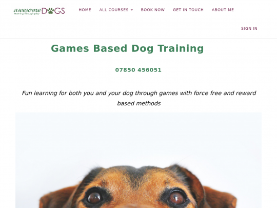 Tablet screenshot of www.awesomedogs.co.uk
