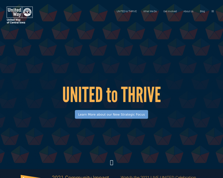 Screenshot of www.unitedwaydm.org