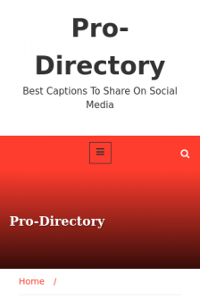 Mobile screenshot of prodirectory.in