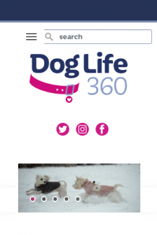 Mobile screenshot of doglife360.co.uk
