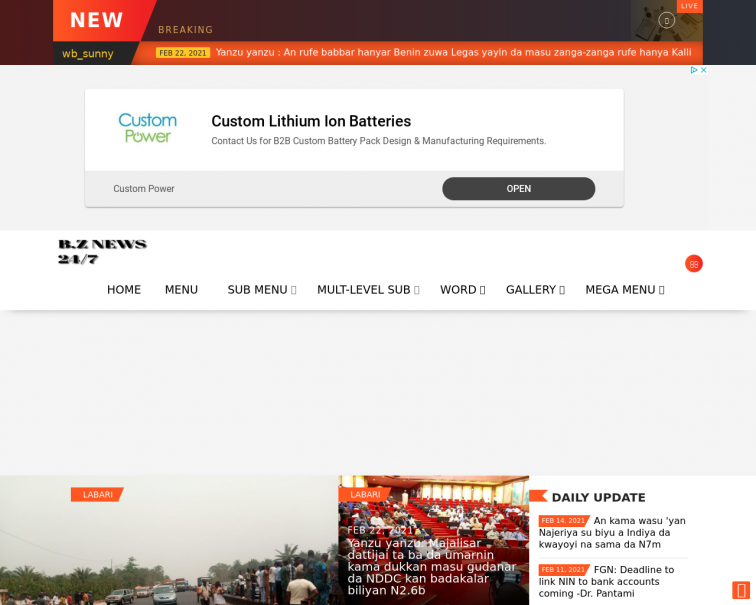 Screenshot of www.bzglobalservice.com.ng