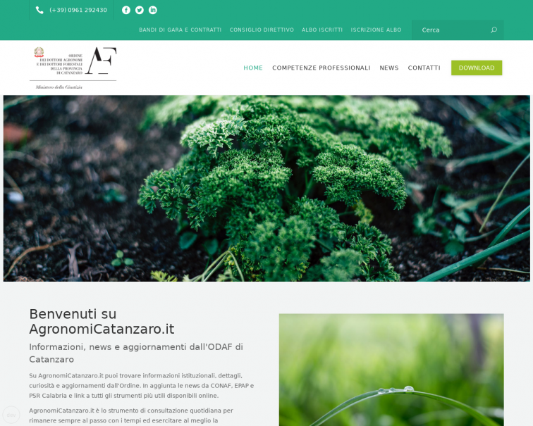 Screenshot of agronomicatanzaro.it