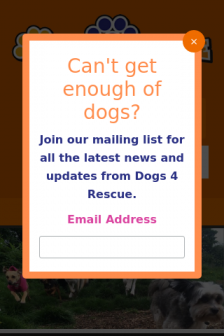 Mobile screenshot of dogs4rescue.co.uk