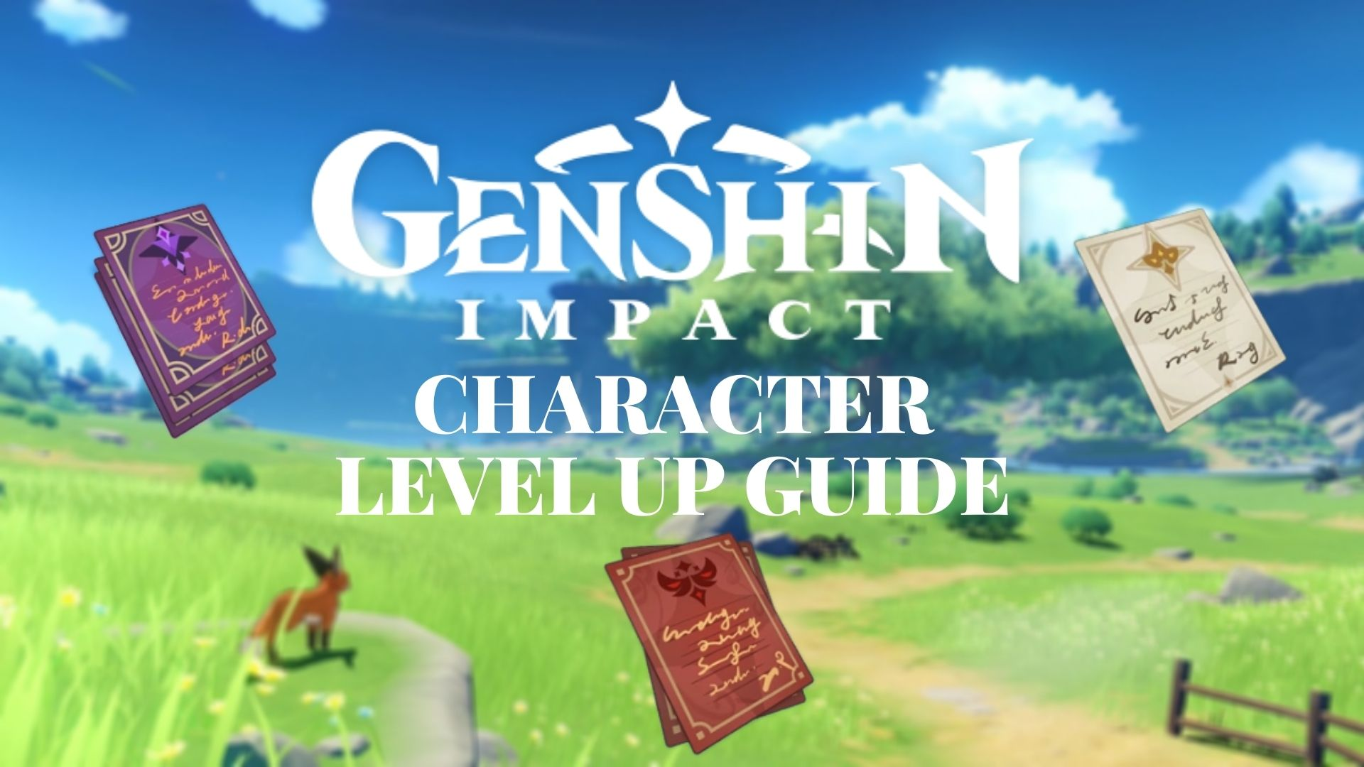 Genshin Impact character level up