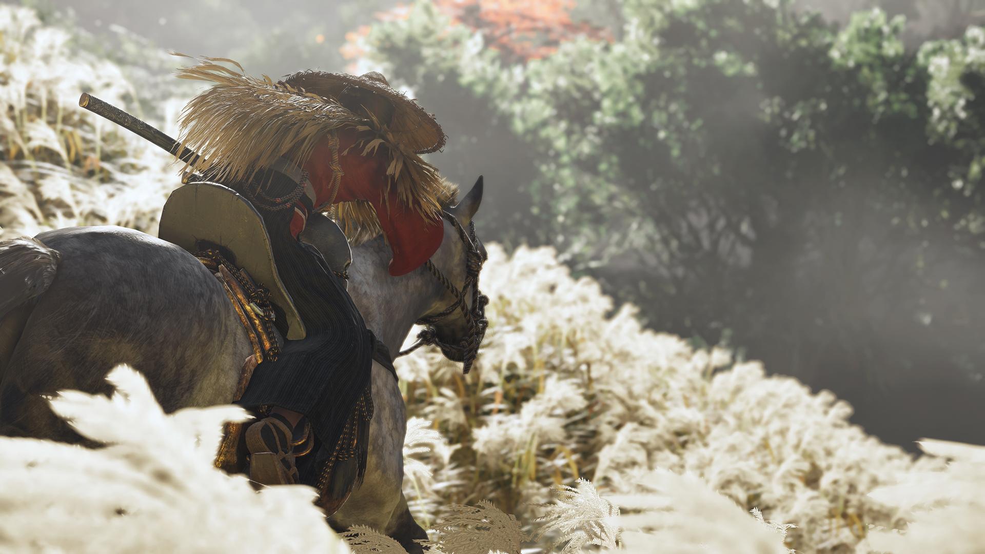 Jin Sakai riding a horse into a forest in Ghost of Tsushima