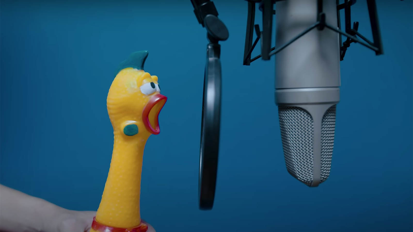 Rubber chicken singing cover