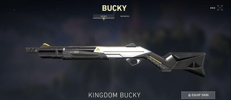 Kingdom Bucky Valorant