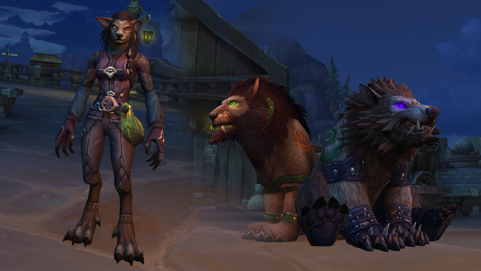 Worgen Druid female and their cat and bear forms