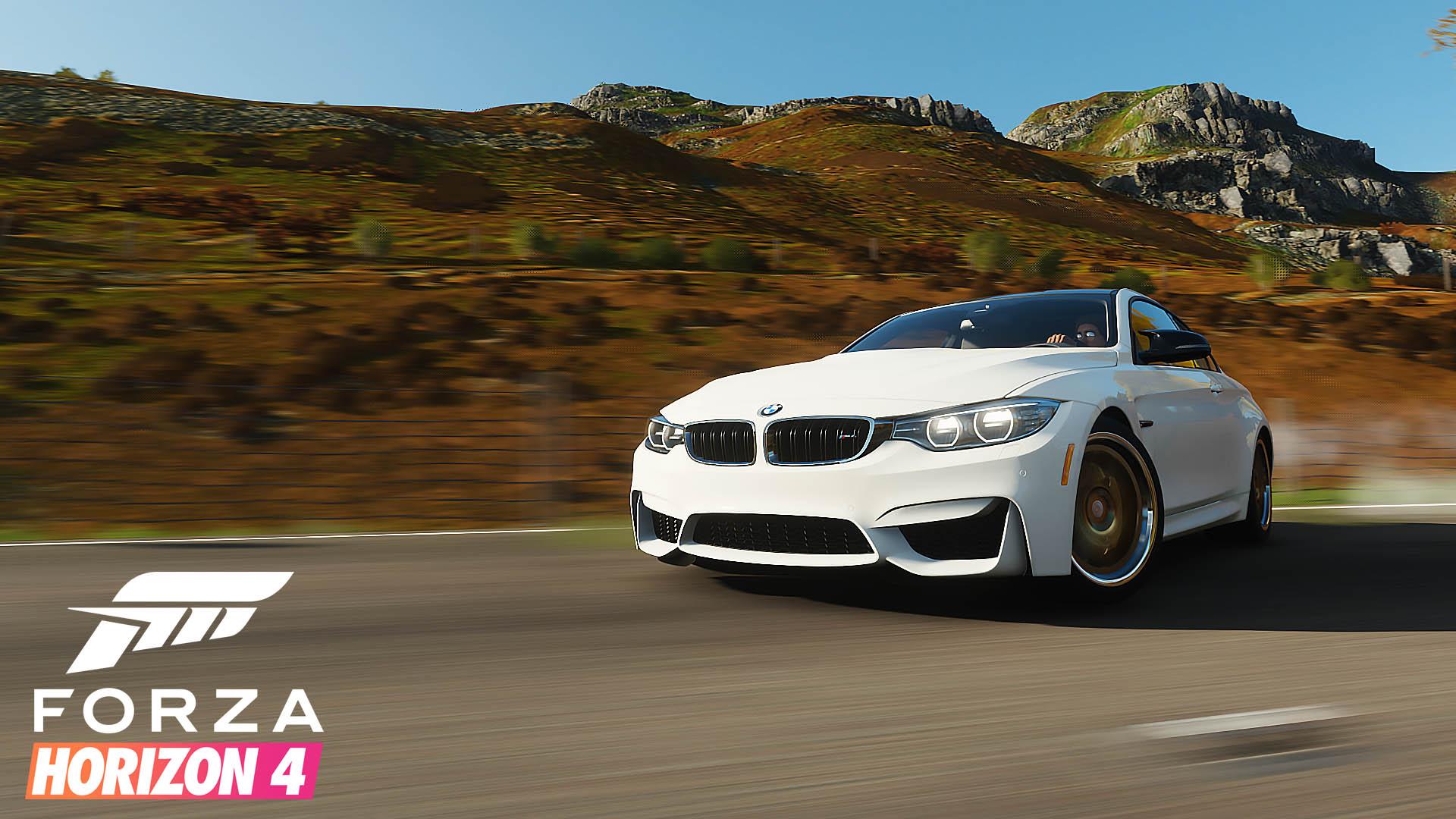 Forza Series 29 Autumn