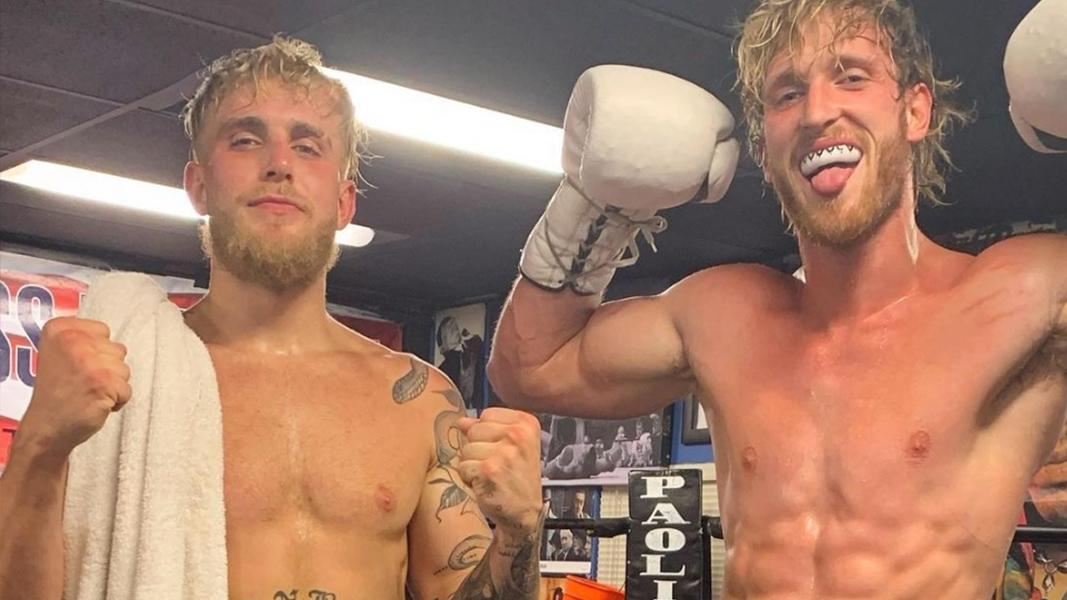 jake and logan paul in boxing ring