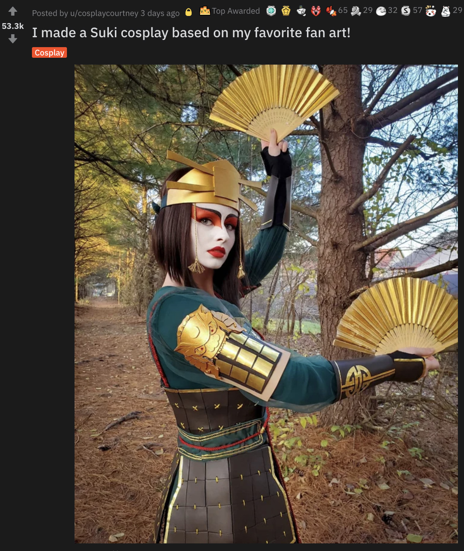 Screenshot of viral Avatar: The Last Airbender Suki cosplay on Reddit.