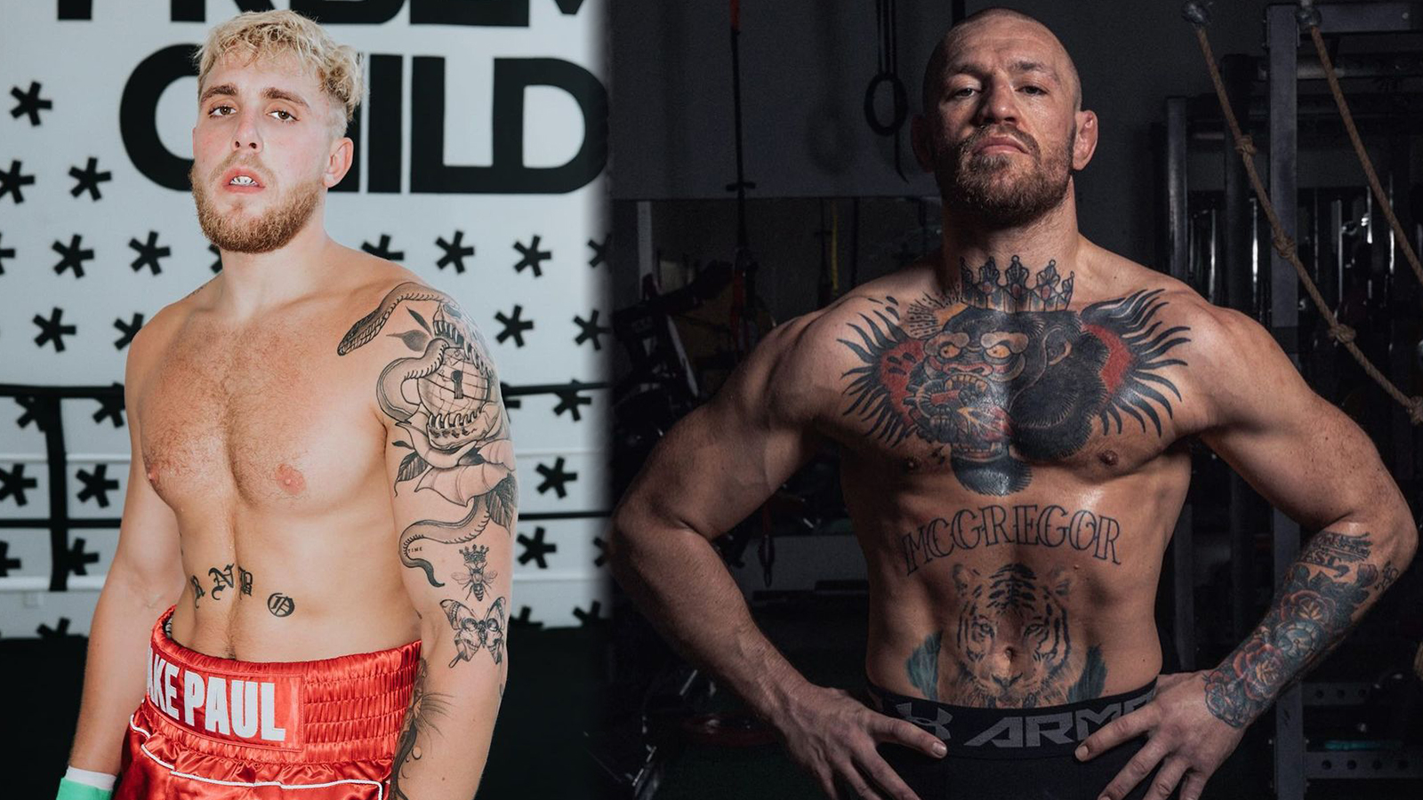 Jake Paul Conor McGregor $50m Offer