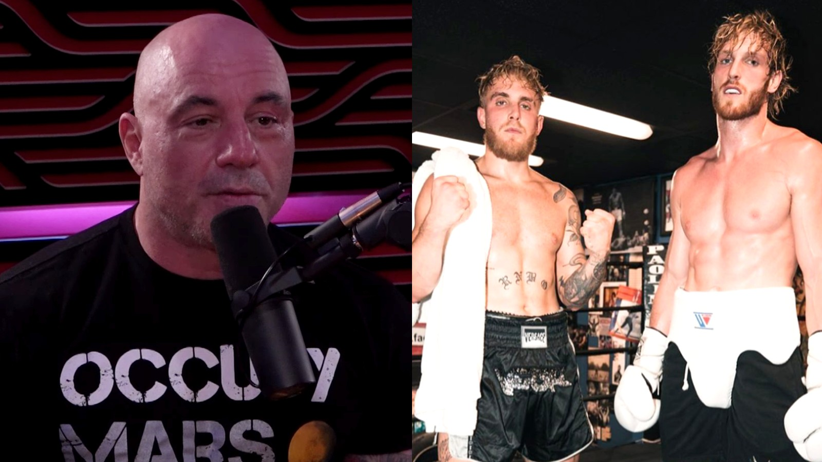 Joe Rogan on his podcast next to image of Paul brothers in training gear
