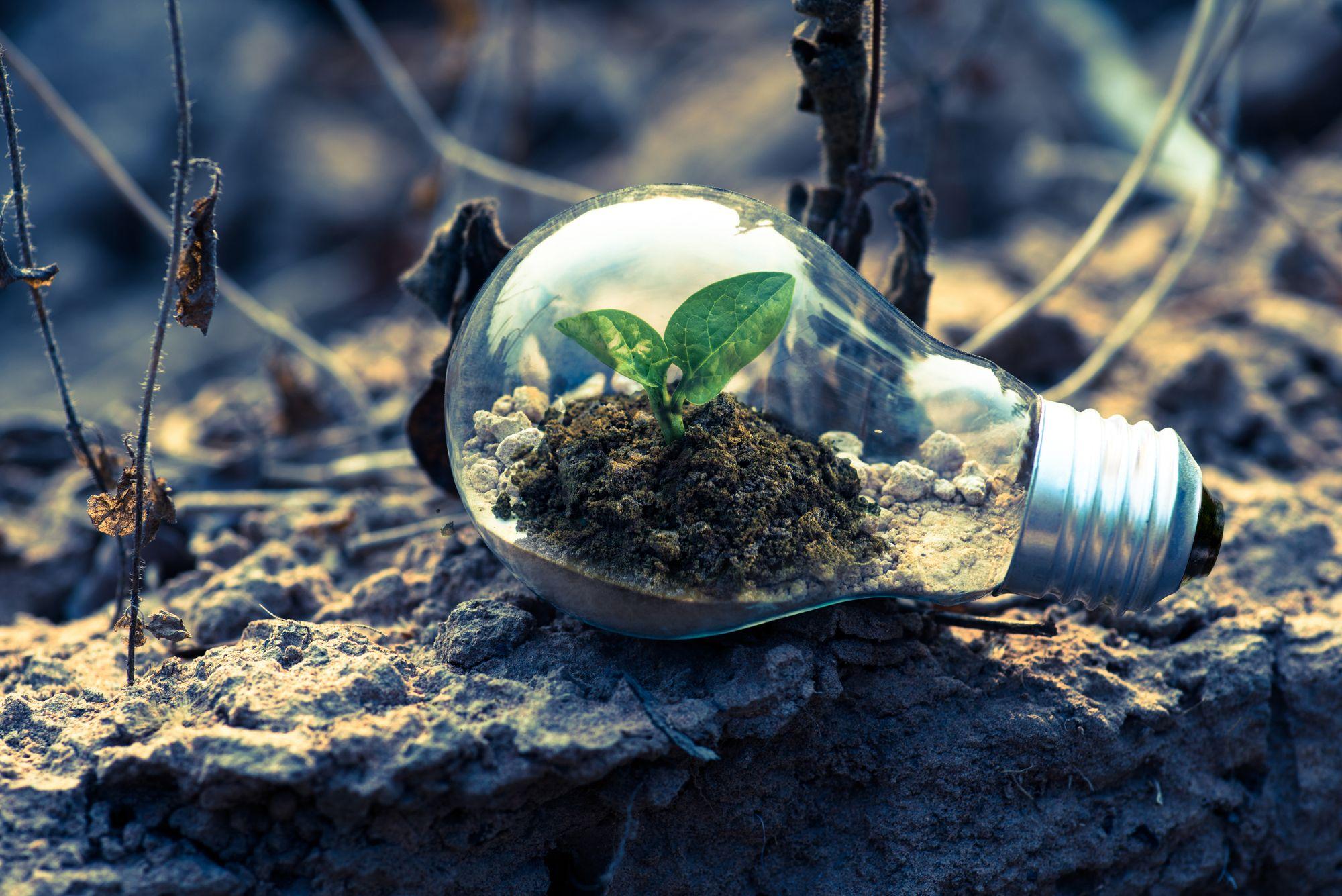 'Digital Transformation' won't help you innovate.
