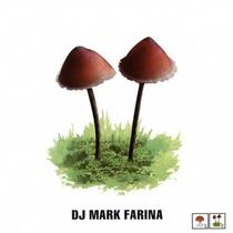 Mushroom Jazz, Vol. 2