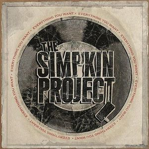 Everything You Want by The Simpkin Project