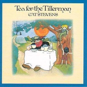 Tea for the Tillerman by Cat Stevens