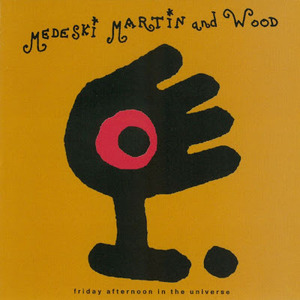 Friday Afternoon in the Universe by Medeski, Martin & Wood