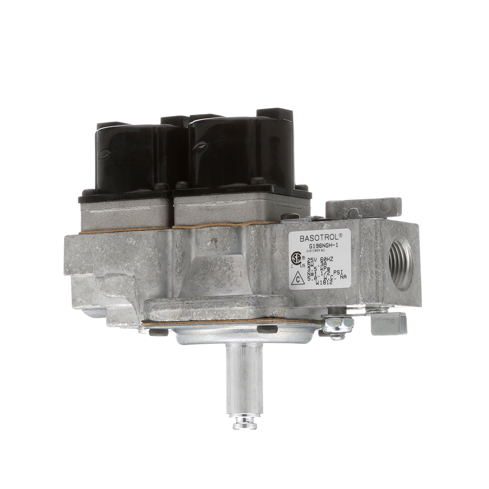 54-1163 - VALVE, DUAL GAS SOLENOID - 24V