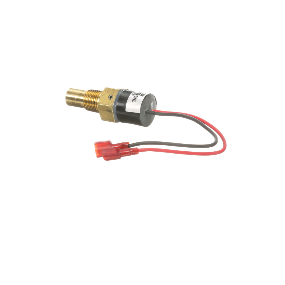 800-9065 - HOLD TEMPERATURE PROBE 195?