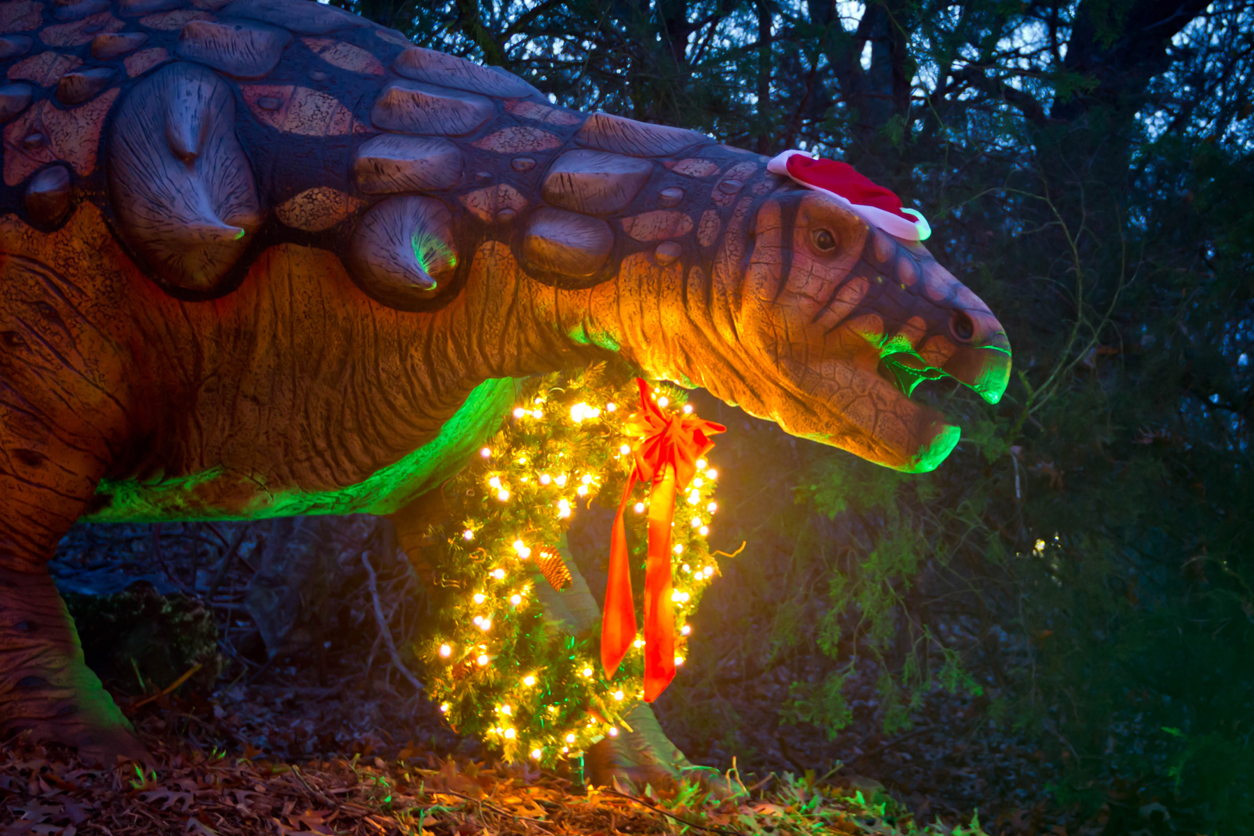 Holidays at the Heard Trail of Lights | Kathy Carter