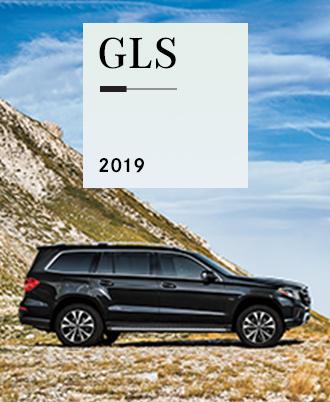 2019 GLS