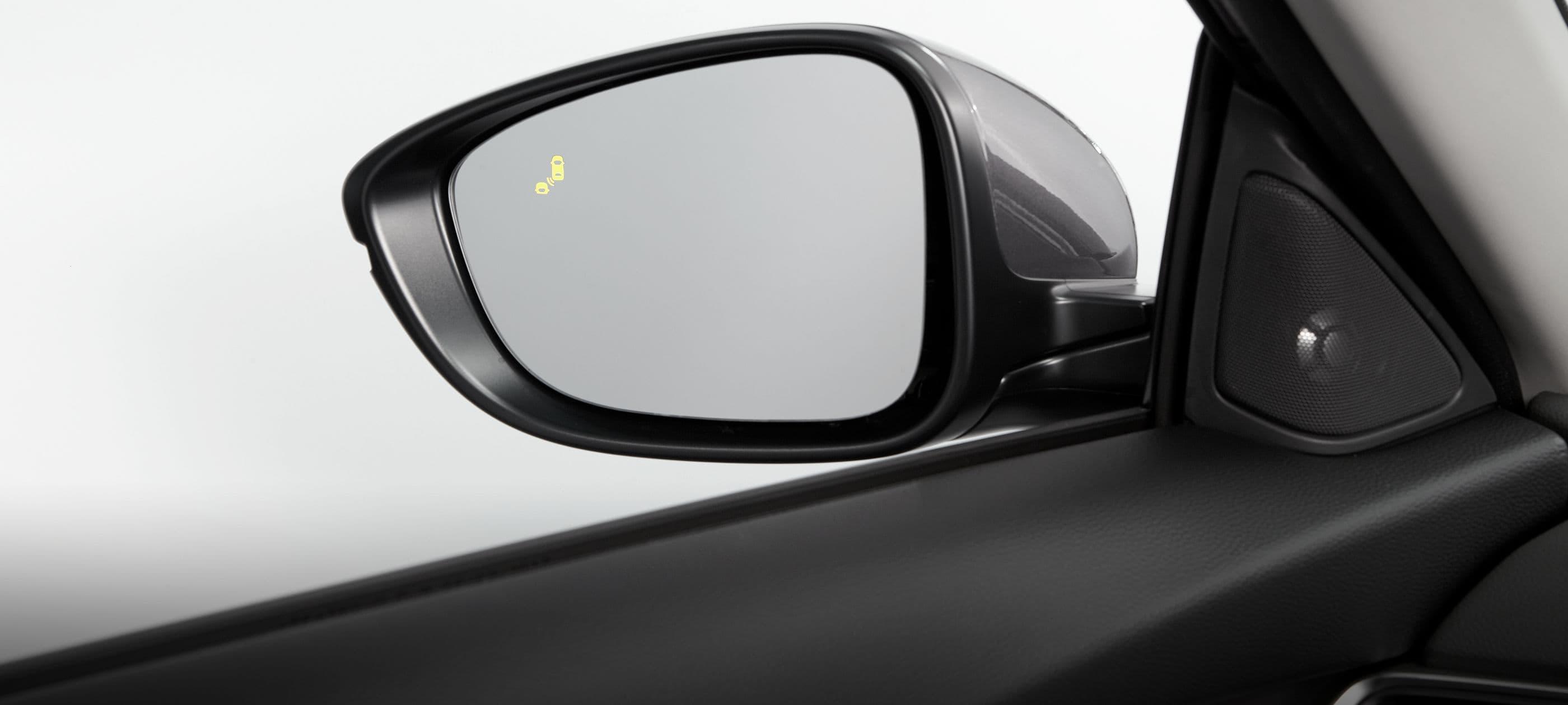 Blind Spot Information (BSI)