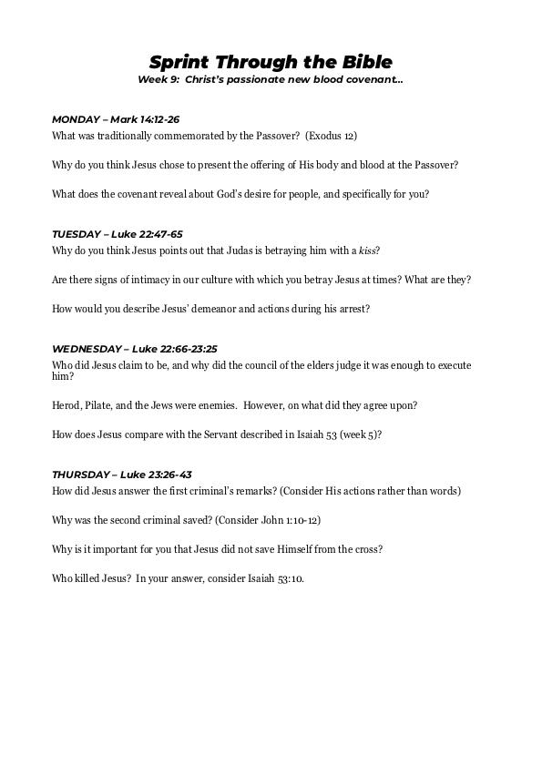 Sprint Through the Bible Workbook PDF