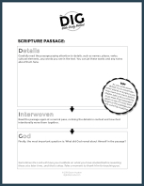 picture regarding Free Printable Bible Study Worksheets known as Free of charge DIG Worksheet - The DIG Bible Exploration Solution