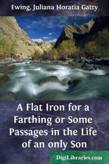 A Flat Iron for a Farthing or Some Passages in the Life of an only Son