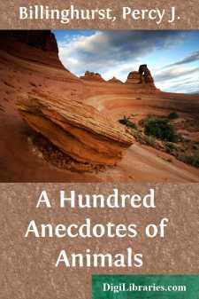 A Hundred Anecdotes of Animals