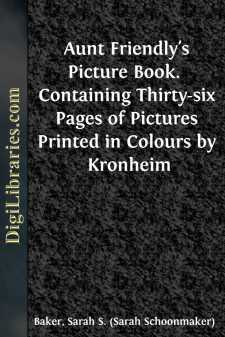 Aunt Friendly's Picture Book.  Containing Thirty-six Pages of Pictures Printed in Colours by Kronheim