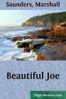Beautiful Joe
