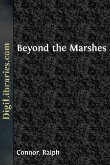 Beyond the Marshes