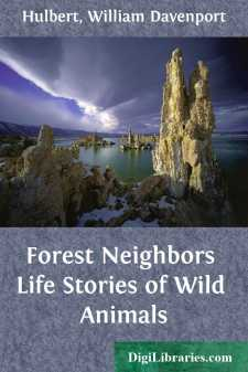 Forest Neighbors