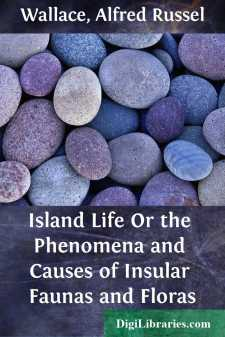 Island Life