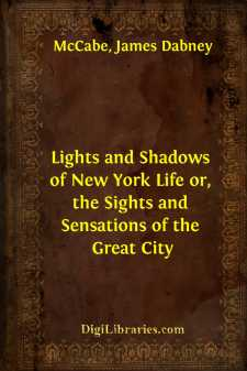 Lights and Shadows of New York Life