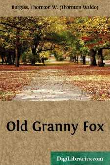 Old Granny Fox