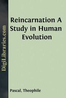 Reincarnation
