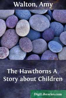 The Hawthorns A Story about Children