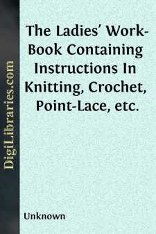 The Ladies' Work-Book Containing Instructions In Knitting, Crochet, Point-Lace, etc.