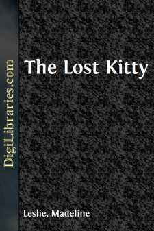 The Lost Kitty