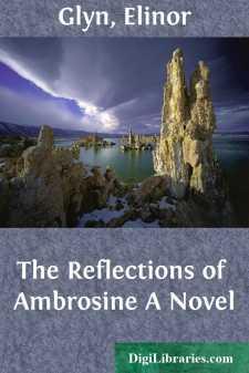 The Reflections of Ambrosine A Novel