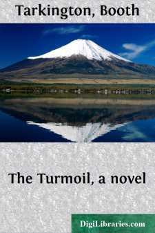 The Turmoil, a novel